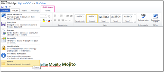 Office Web App SkyDrive Menu